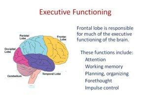 http://www.mominchapelhillnc.com/wp-content/uploads/2014/03/ExecutiveFunctionBrain.jpg